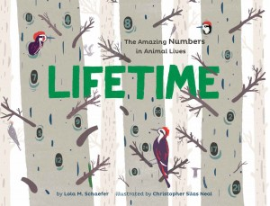 Lifetime by Lola Schaefer